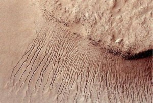 Tracce di sale su Marte