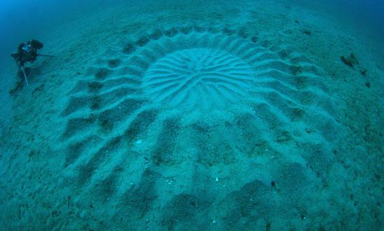 Cerchi sottomarini